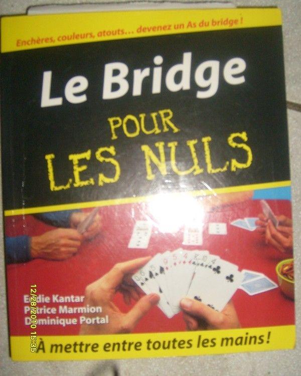 Bridge Pour Les Nuls